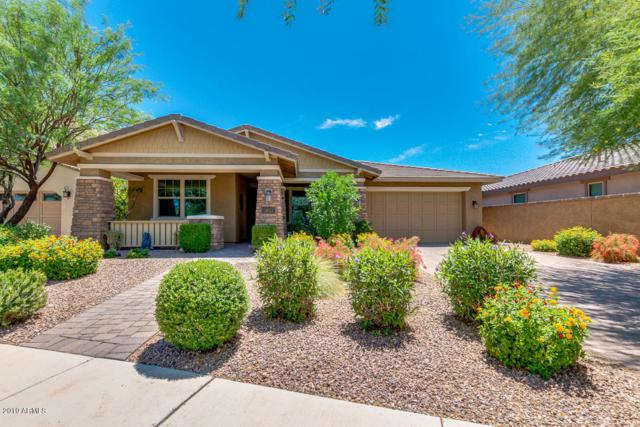 5033 S Cambium Lane, Mesa, AZ 85212 (MLS #5938411) :: The Results Group