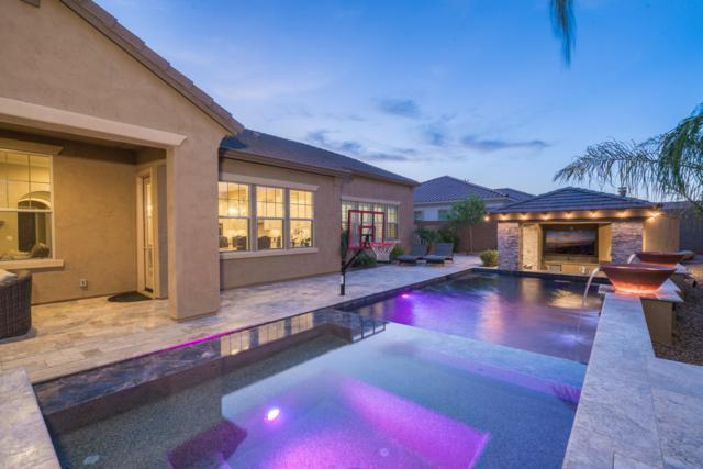 3803 S White Drive, Chandler, AZ 85286 (MLS #5938412) :: Yost Realty Group at RE/MAX Casa Grande