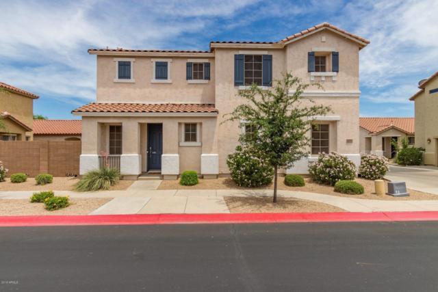 6341 S Blake Street, Gilbert, AZ 85298 (MLS #5938455) :: Revelation Real Estate