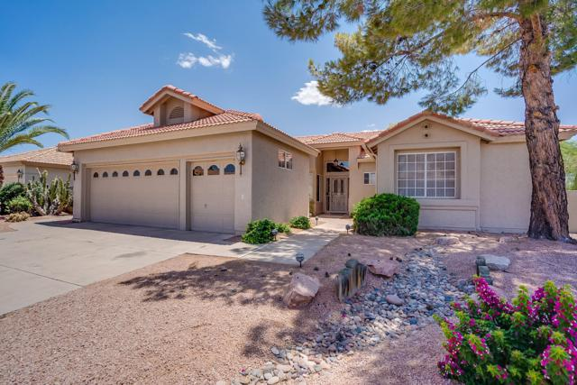 10423 E Elmhurst Drive, Sun Lakes, AZ 85248 (MLS #5938456) :: Yost Realty Group at RE/MAX Casa Grande