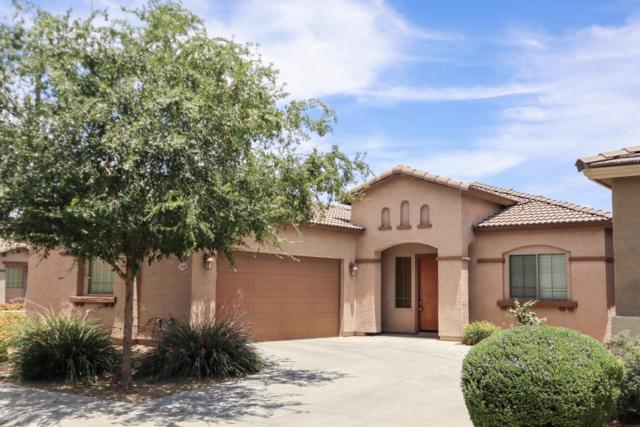 1045 S Fargo Street, Chandler, AZ 85286 (MLS #5938490) :: CC & Co. Real Estate Team
