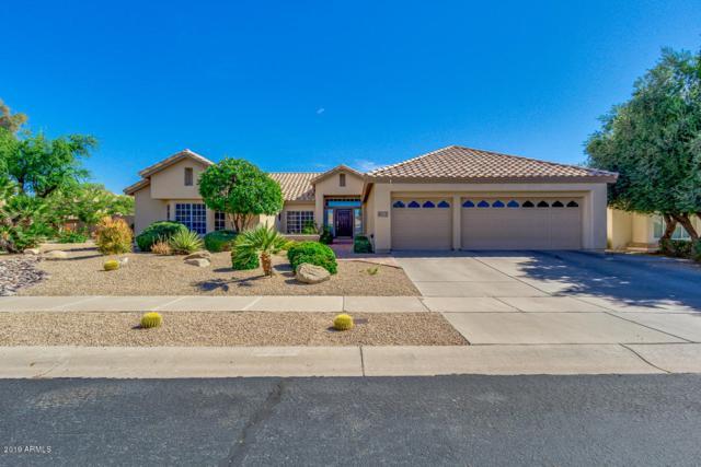 14009 S 36TH Place, Phoenix, AZ 85044 (MLS #5938559) :: Occasio Realty
