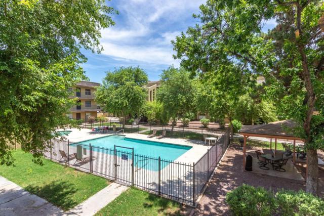 461 W Holmes Avenue #269, Mesa, AZ 85210 (MLS #5938567) :: Phoenix Property Group