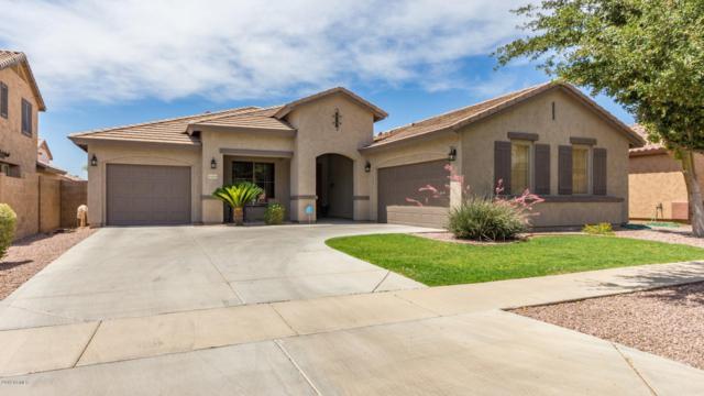15213 W Calavar Road, Surprise, AZ 85379 (MLS #5938572) :: Revelation Real Estate