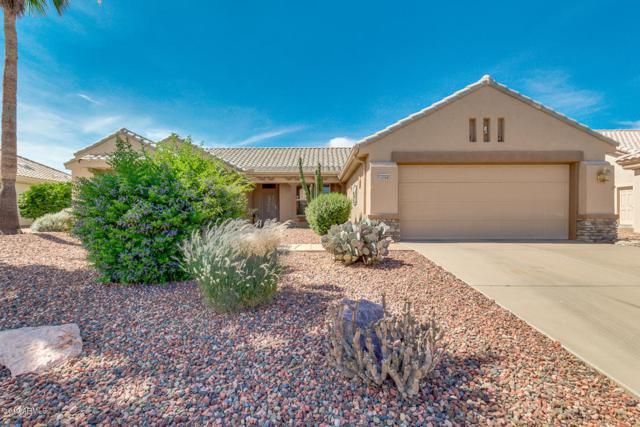 14504 W Robertson Drive, Sun City West, AZ 85375 (MLS #5938578) :: Yost Realty Group at RE/MAX Casa Grande