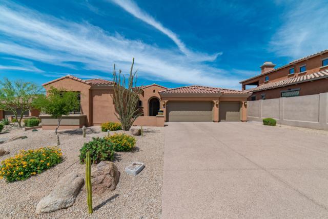 18402 N 96TH Way, Scottsdale, AZ 85255 (MLS #5938585) :: The Pete Dijkstra Team