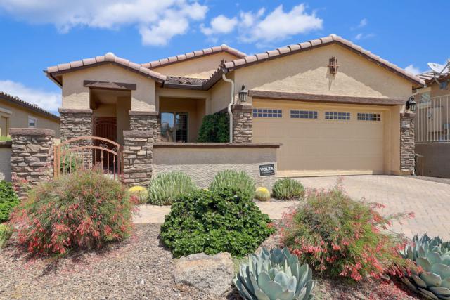 17534 W Glenhaven Drive, Goodyear, AZ 85338 (MLS #5938601) :: Cindy & Co at My Home Group
