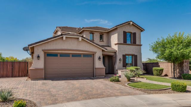 6391 S Fresno Street, Chandler, AZ 85249 (MLS #5938647) :: The Kenny Klaus Team