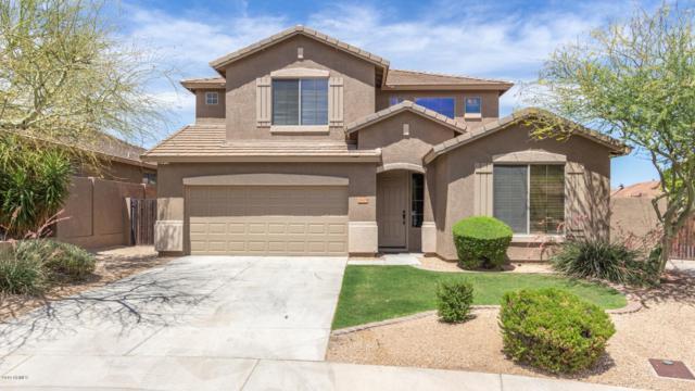 26829 N 85th Drive, Peoria, AZ 85383 (MLS #5938692) :: The Laughton Team