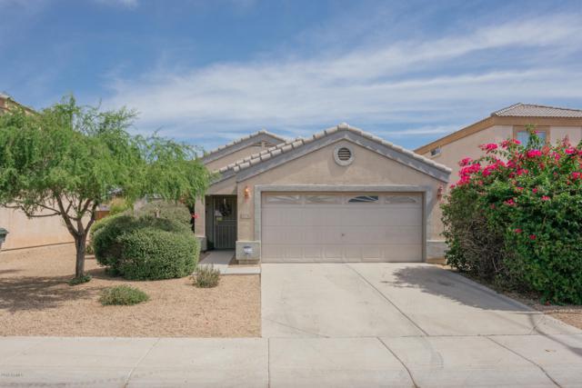 12742 W Dahlia Drive, El Mirage, AZ 85335 (MLS #5938701) :: Revelation Real Estate