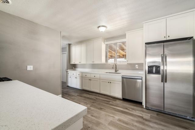 4423 N 49TH Avenue, Phoenix, AZ 85031 (MLS #5938718) :: Yost Realty Group at RE/MAX Casa Grande