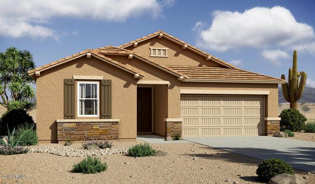 11836 N 162ND Lane, Surprise, AZ 85379 (MLS #5938720) :: Riddle Realty