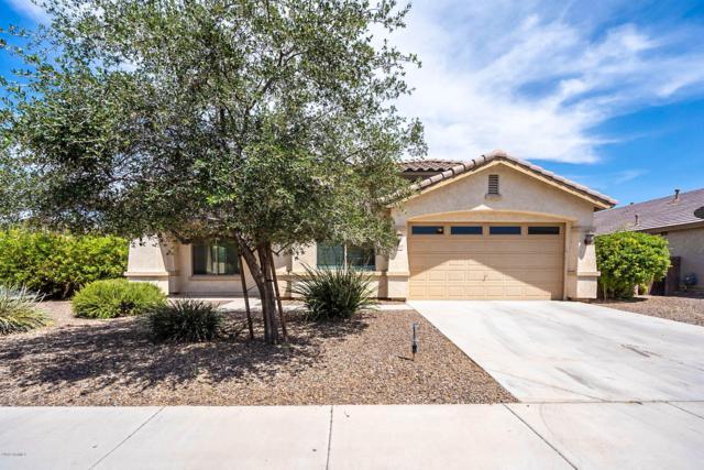 22157 N Greenland Park Drive, Maricopa, AZ 85139 (MLS #5938722) :: Revelation Real Estate