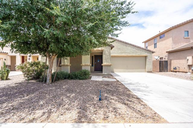 42490 W Mira Court, Maricopa, AZ 85138 (MLS #5938741) :: Revelation Real Estate