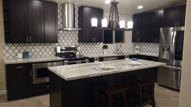 6402 E Bambi Drive, Mesa, AZ 85215 (MLS #5938875) :: Revelation Real Estate
