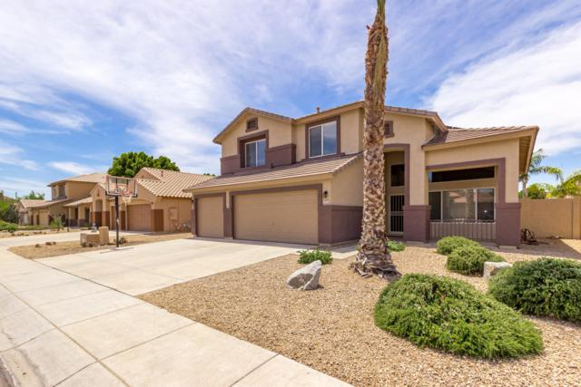 7925 W Rose Garden Lane, Peoria, AZ 85382 (MLS #5938902) :: The Laughton Team