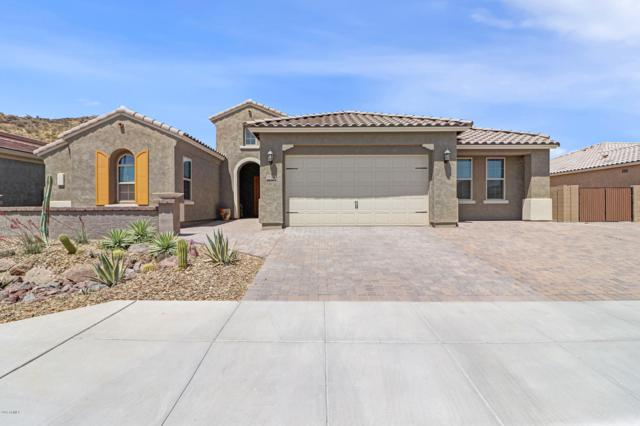 27562 N 99th Drive, Peoria, AZ 85383 (MLS #5938950) :: Riddle Realty