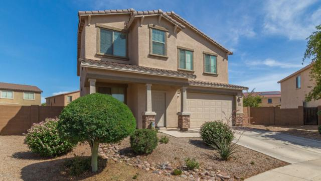 6917 W Shumway Farm Road, Laveen, AZ 85339 (MLS #5938981) :: Revelation Real Estate