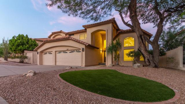 11217 N 129TH Way, Scottsdale, AZ 85259 (MLS #5938984) :: The Pete Dijkstra Team