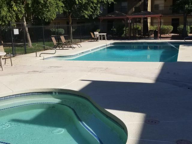 461 W Holmes Avenue #172, Mesa, AZ 85210 (MLS #5938990) :: Kepple Real Estate Group