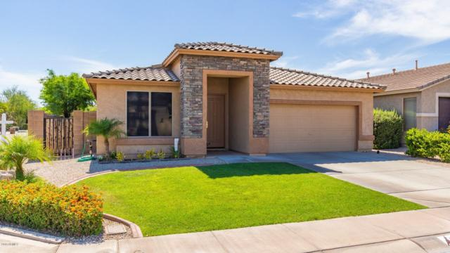 20508 N 94TH Drive, Peoria, AZ 85382 (MLS #5939021) :: The Laughton Team