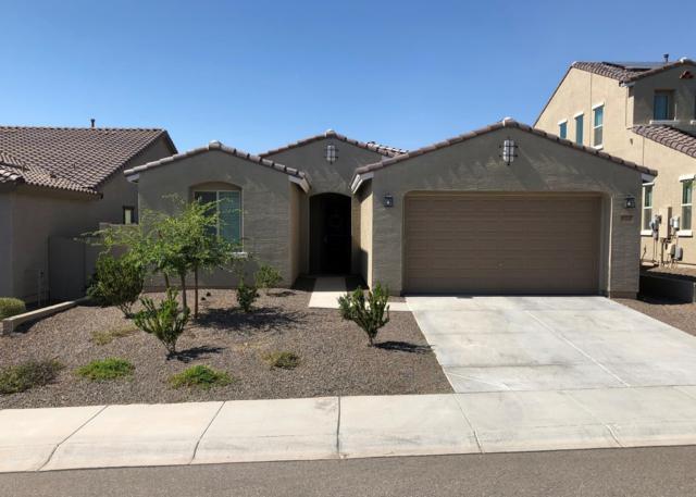 10722 W Brooklite Road, Peoria, AZ 85383 (MLS #5939030) :: The Pete Dijkstra Team