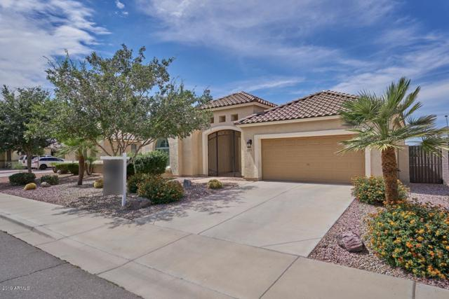 21420 E Lords Way, Queen Creek, AZ 85142 (MLS #5939043) :: The Results Group
