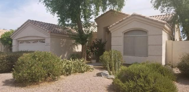 7126 E Lakeview Avenue, Mesa, AZ 85209 (MLS #5939045) :: The Bill and Cindy Flowers Team