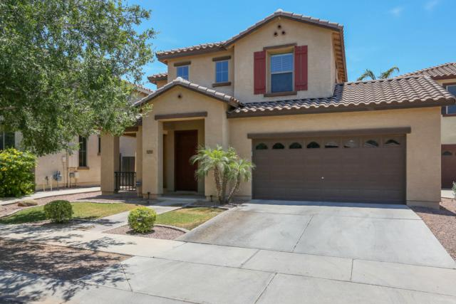 3325 E Carla Vista Drive, Gilbert, AZ 85295 (MLS #5939052) :: The Results Group