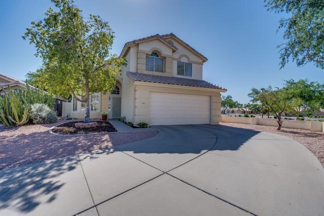 1080 N Robins Way, Chandler, AZ 85225 (MLS #5939072) :: Revelation Real Estate