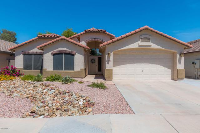 2405 N 128TH Drive, Avondale, AZ 85392 (MLS #5939084) :: Revelation Real Estate