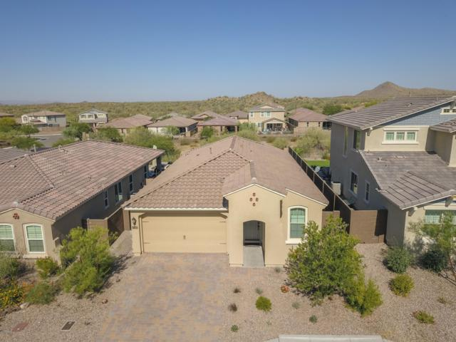 30846 N 137th Lane, Peoria, AZ 85383 (MLS #5939099) :: The Garcia Group