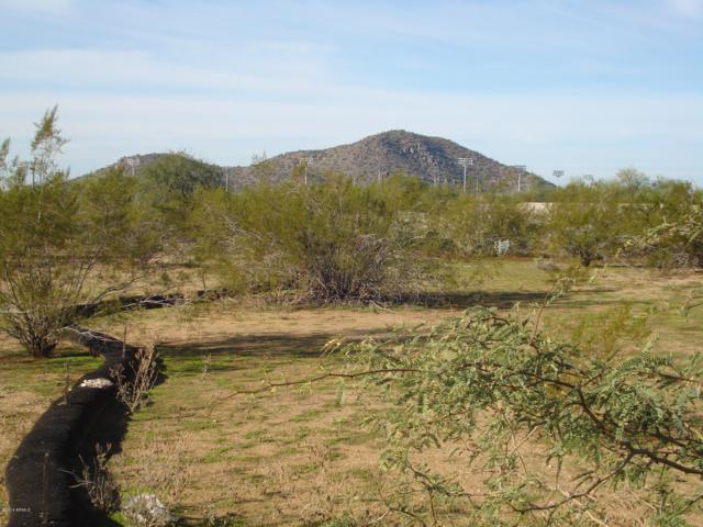 21640 N 30TH Way, Phoenix, AZ 85050 (MLS #5939106) :: Conway Real Estate