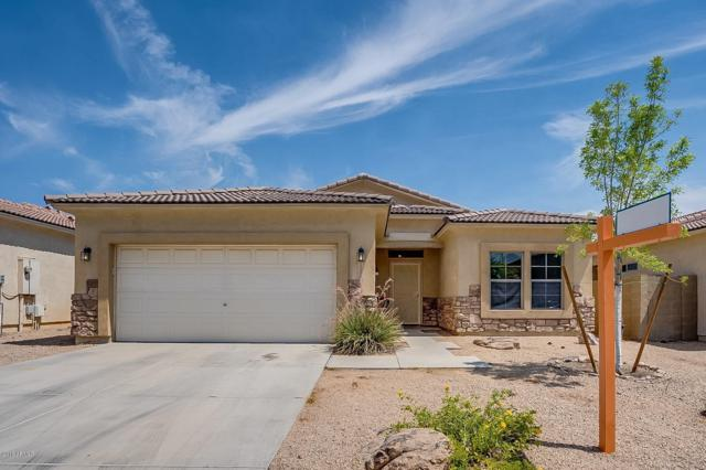 12222 W Ironwood Street, El Mirage, AZ 85335 (MLS #5939119) :: Occasio Realty