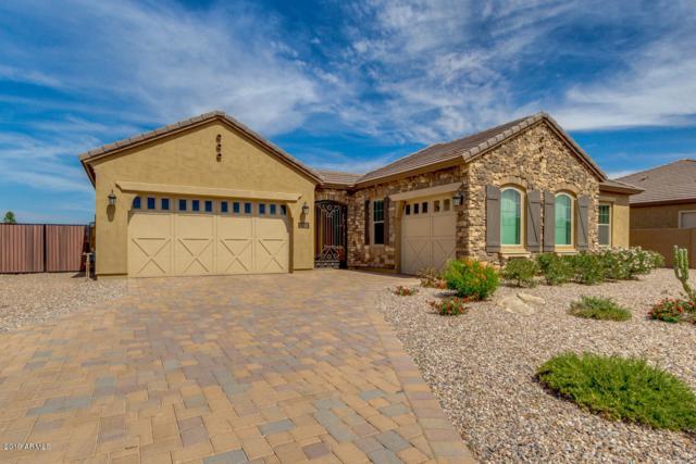3981 S Granite Drive, Chandler, AZ 85286 (MLS #5939124) :: Revelation Real Estate