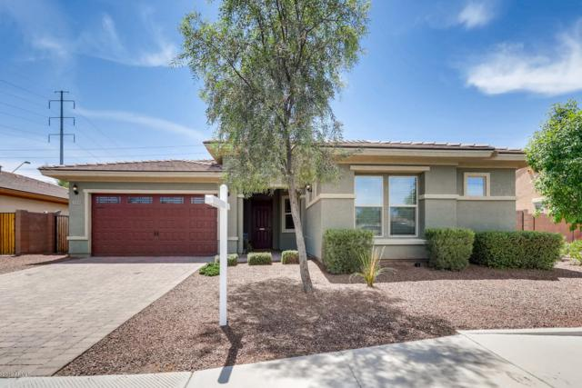 3206 S 186TH Lane, Goodyear, AZ 85338 (MLS #5939146) :: Kortright Group - West USA Realty