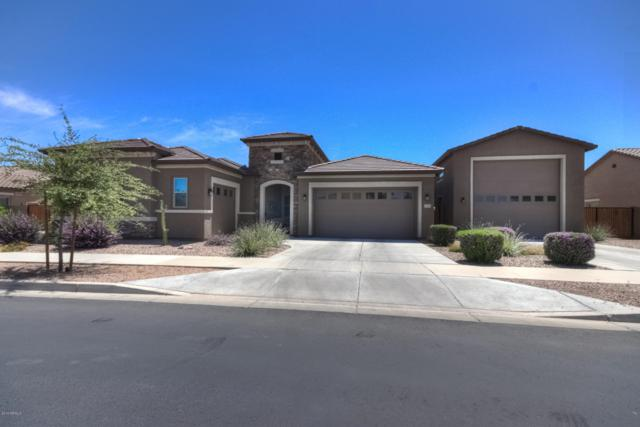21353 S 219TH Place, Queen Creek, AZ 85142 (MLS #5939158) :: Revelation Real Estate