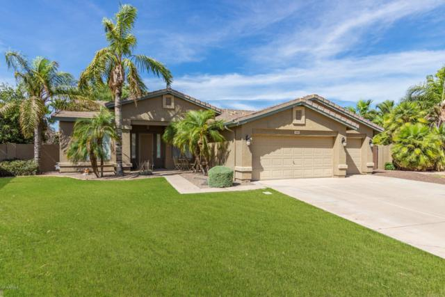 506 E Windsor Drive, Gilbert, AZ 85296 (MLS #5939159) :: Revelation Real Estate