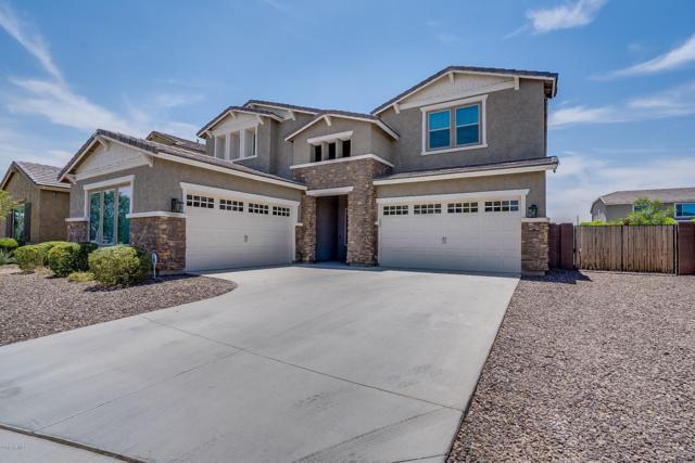 20043 E Rosa Road, Queen Creek, AZ 85142 (MLS #5939166) :: Yost Realty Group at RE/MAX Casa Grande