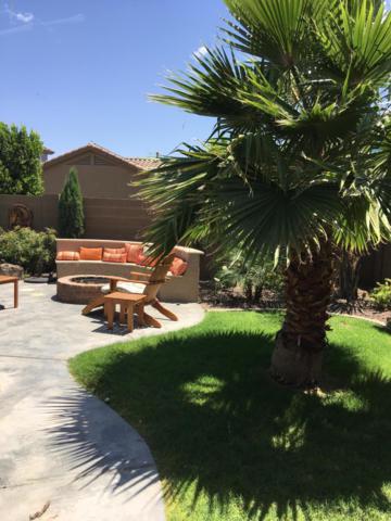 17681 W Sherman Street, Goodyear, AZ 85338 (MLS #5939175) :: Occasio Realty