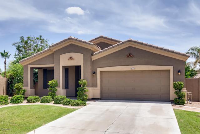 3779 E Dublin Street, Gilbert, AZ 85295 (MLS #5939177) :: Revelation Real Estate