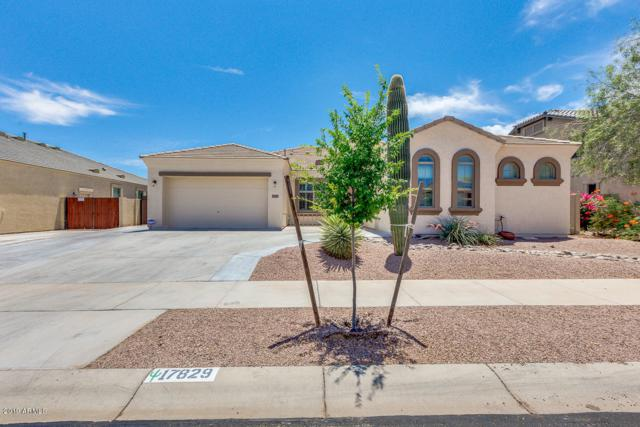 17829 W Wood Drive, Surprise, AZ 85388 (MLS #5939185) :: Occasio Realty