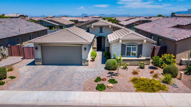 228 W White Oak Avenue, San Tan Valley, AZ 85140 (MLS #5939212) :: Revelation Real Estate