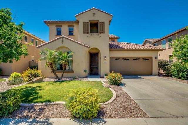 25741 W Hazel Drive, Buckeye, AZ 85326 (MLS #5939231) :: The Kenny Klaus Team
