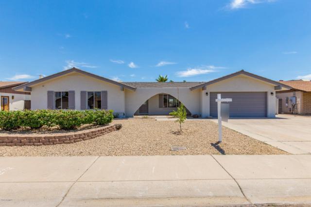4003 W Helena Drive, Glendale, AZ 85308 (MLS #5939264) :: Occasio Realty