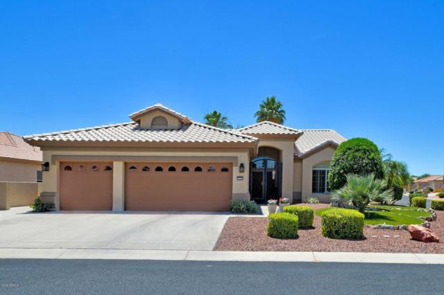 15991 W Edgemont Avenue, Goodyear, AZ 85395 (MLS #5939273) :: Kortright Group - West USA Realty