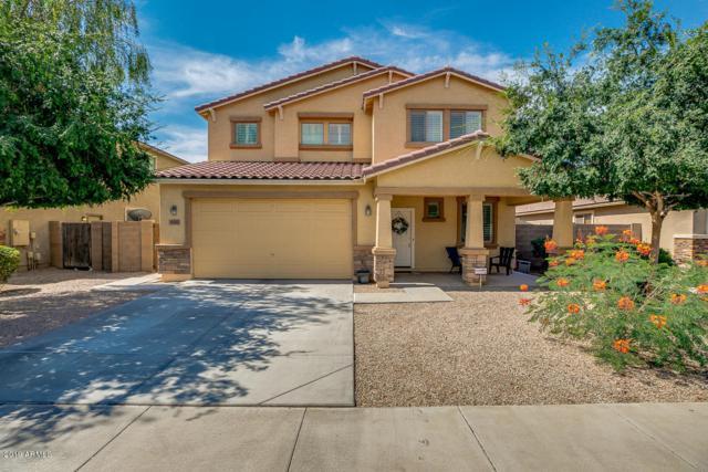 43581 W Knauss Drive, Maricopa, AZ 85138 (MLS #5939339) :: Revelation Real Estate