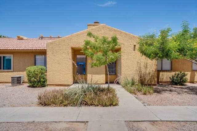 3511 E Baseline Road #1260, Phoenix, AZ 85042 (MLS #5939342) :: Revelation Real Estate