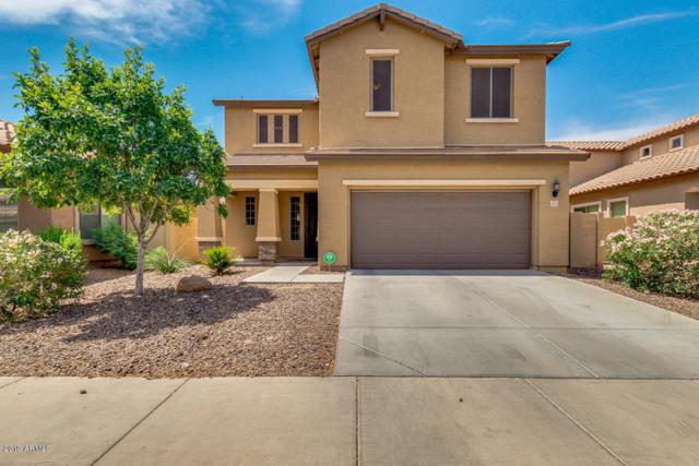 4061 E Torrey Pines Lane, Chandler, AZ 85249 (MLS #5939355) :: Revelation Real Estate