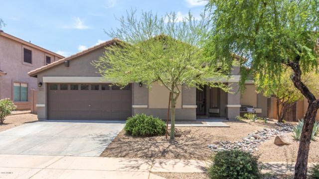 2405 W Florentine Road, Phoenix, AZ 85086 (MLS #5939396) :: Revelation Real Estate